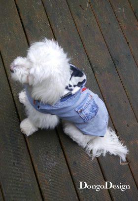 Hundemantel Jack the Zipper